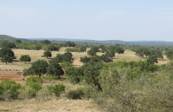 134.9 acre Art/Hedwigs Hill Rd Ranch