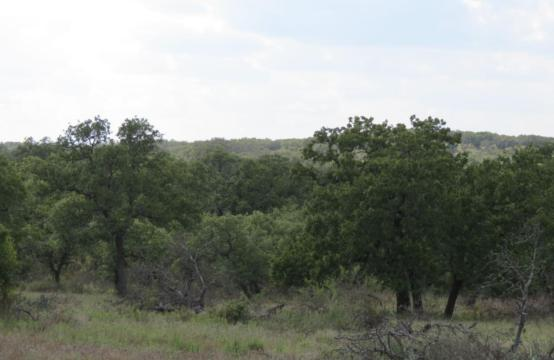 152.7 Acre Ranch near Fredonia, Texas.