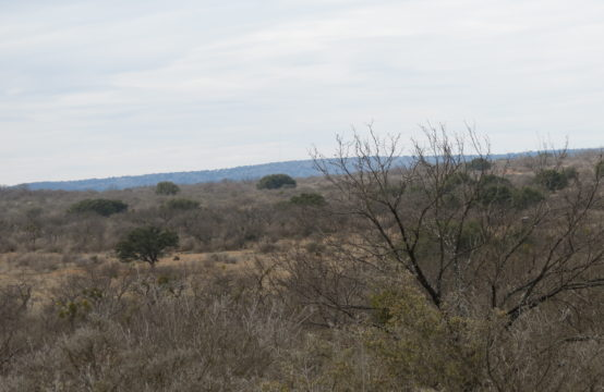 23 +/- acres Hedwigs Hill Road
